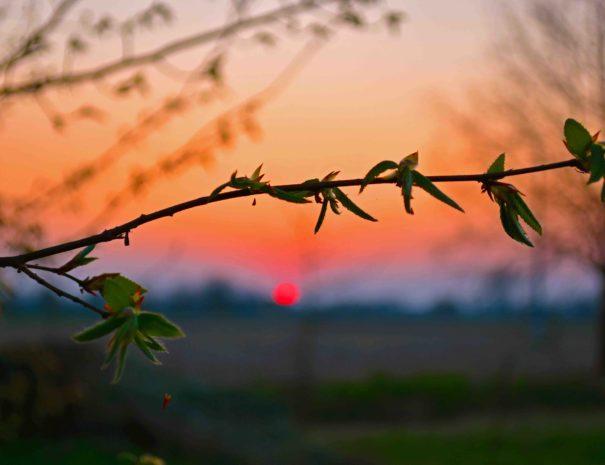 Uno dei tramonti in Cascina